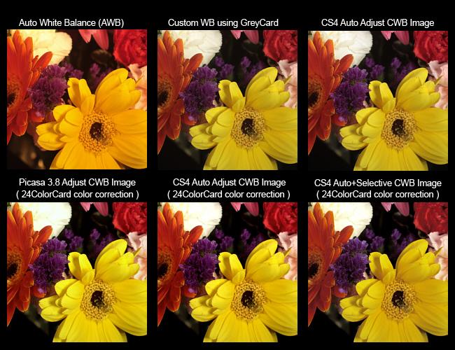 24 CameraTrax ColorCard 3 x 5